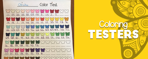 Color Testers Craft